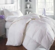 Renova Synthetic Comforter