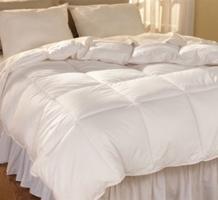 Hospitality Down Blanket