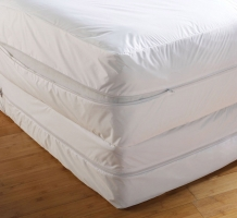 Mattress Protector - bed bug